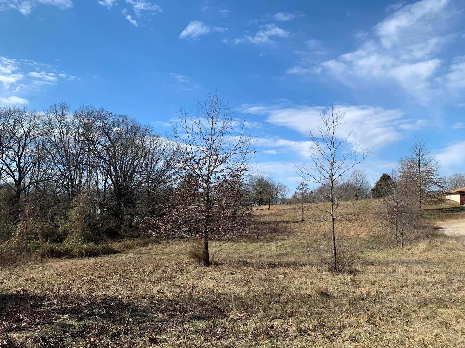Building Lot for Sale in South Central Missouri