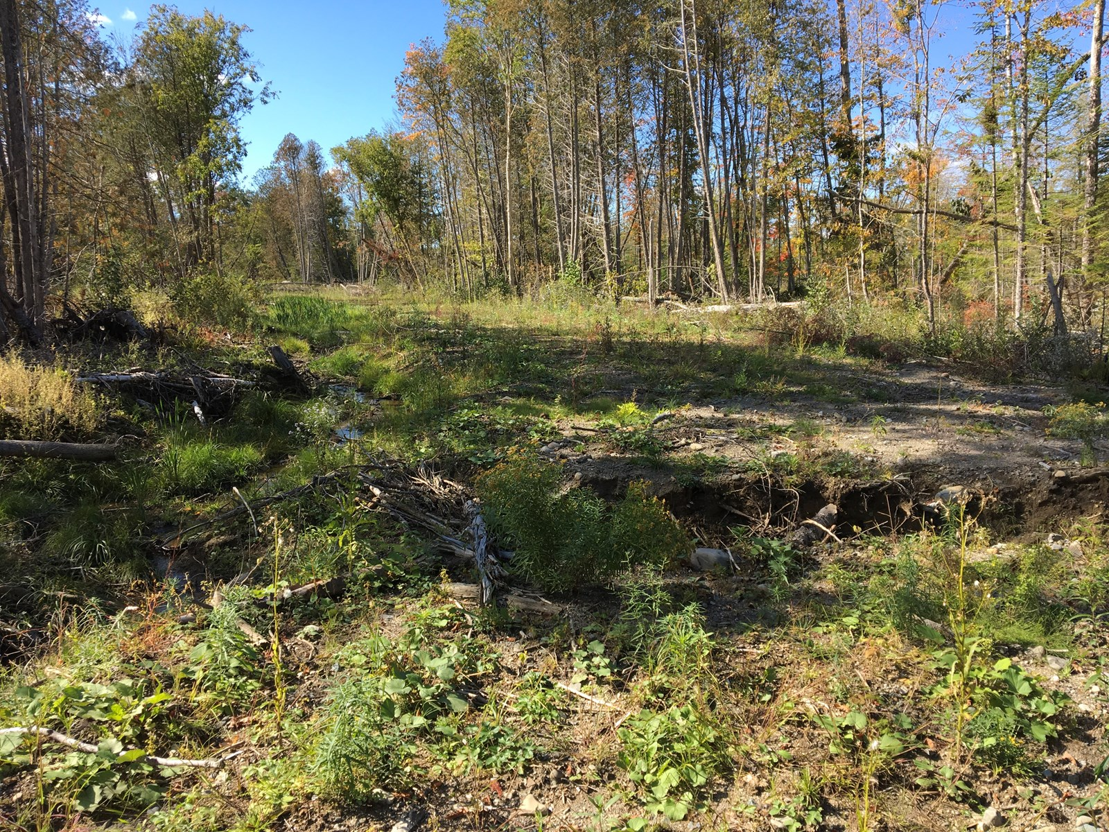 Kenduskeag Stream Recreational Land For Sale