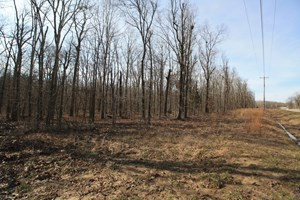 WAPPAPELLO MO RESIDENTIAL LAND FOR SALE