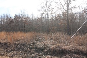 WAPPAPELLO LAKE MO RECREATIONAL LAND FOR SALE