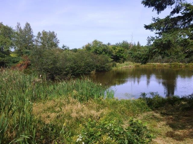 Land Lot For Sale in Washington County Maine