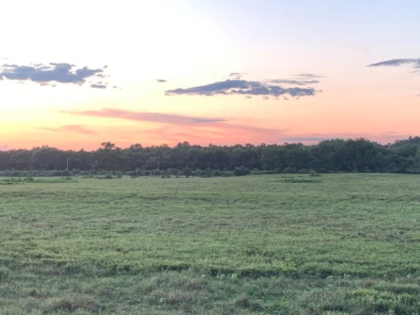 OKLAHOMA CATTLE RANCH PASTURE HAY & HOMESITE FOR SALE