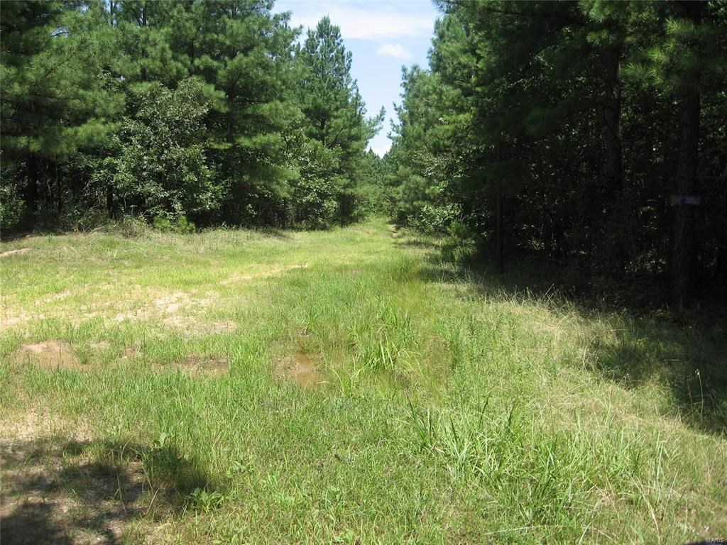 MISSOURI OZARKS DEER HUNTING PROPERTY: