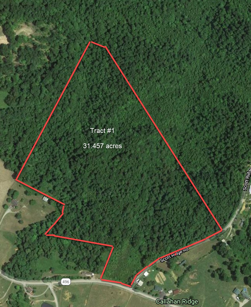Hunting, Timber, Utilities Available, Home Site, Creek