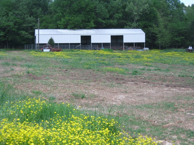 Ranch for sale, Farm for Cattle or Horses for sale Arkansas