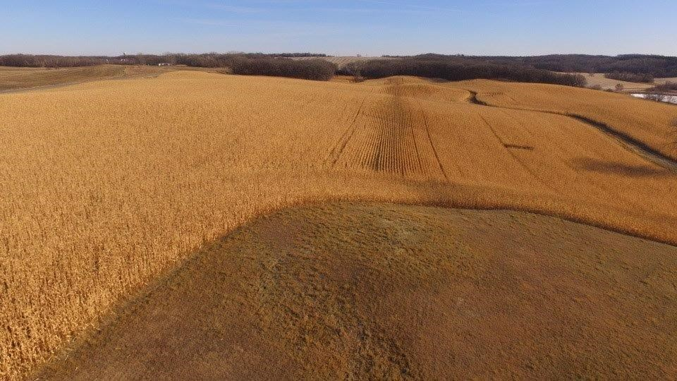OTTER TAIL COUNTY LAND AUCTION  330 +/- TOTAL ACRES
