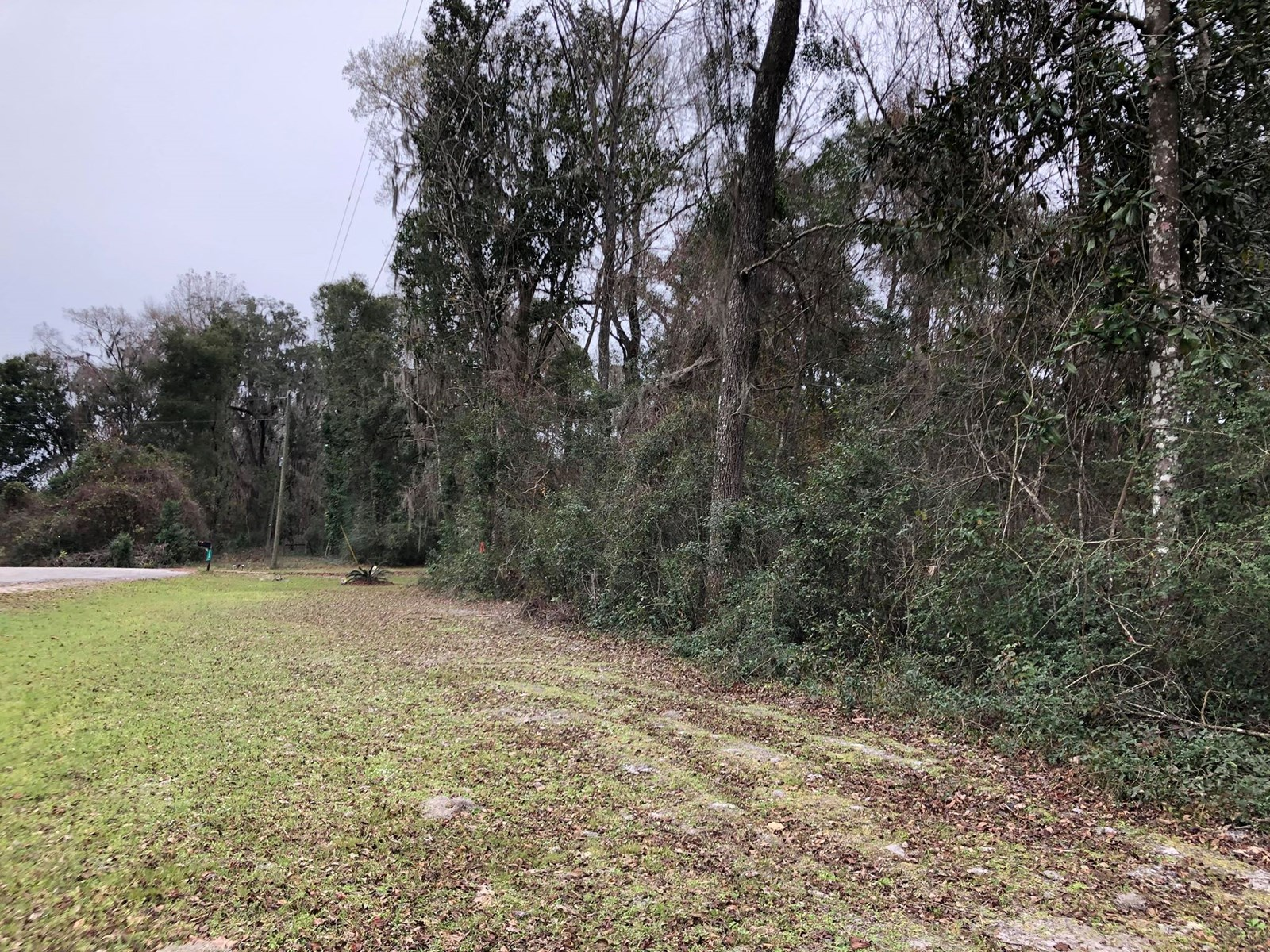 1 ACRE LOT IN LEVY COUNTY, FL FOR SALE!