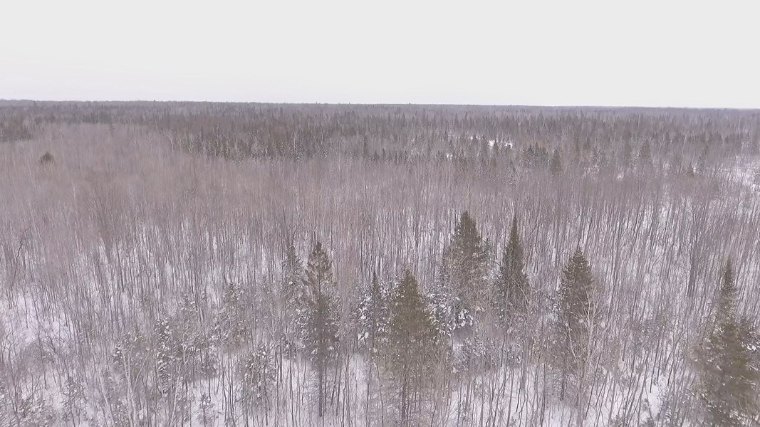 Michigan LandPro