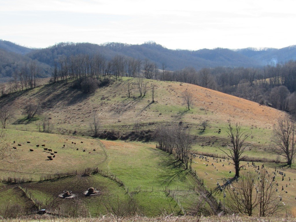 Large Acreage Farm With Home Sites For Sale