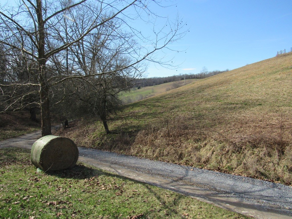 Mini Farm And Home Site For Sale In Meadowview VA