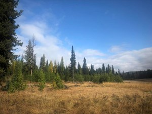 HUNTING & RECREATIONAL RANCH FOR SALE IN LINCOLN COUNTY, MT