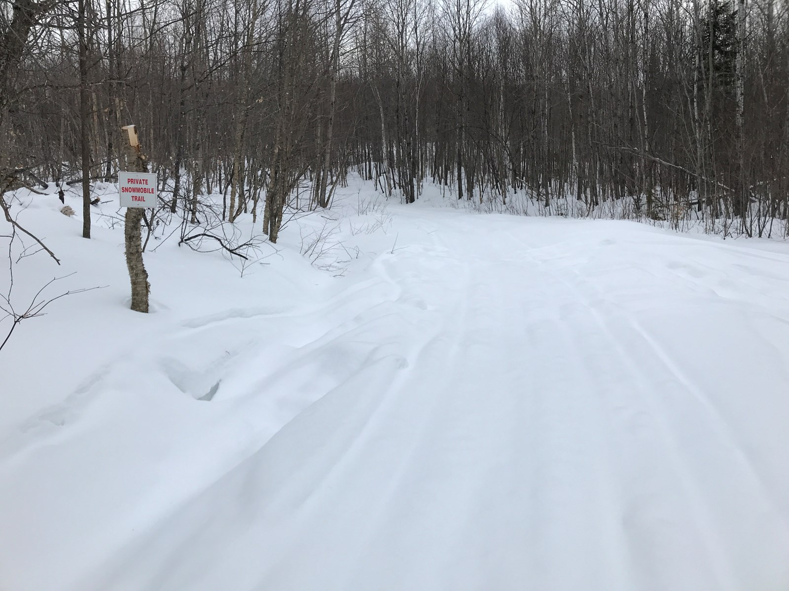 Recreational Land Lot for Sale in Northern Maine