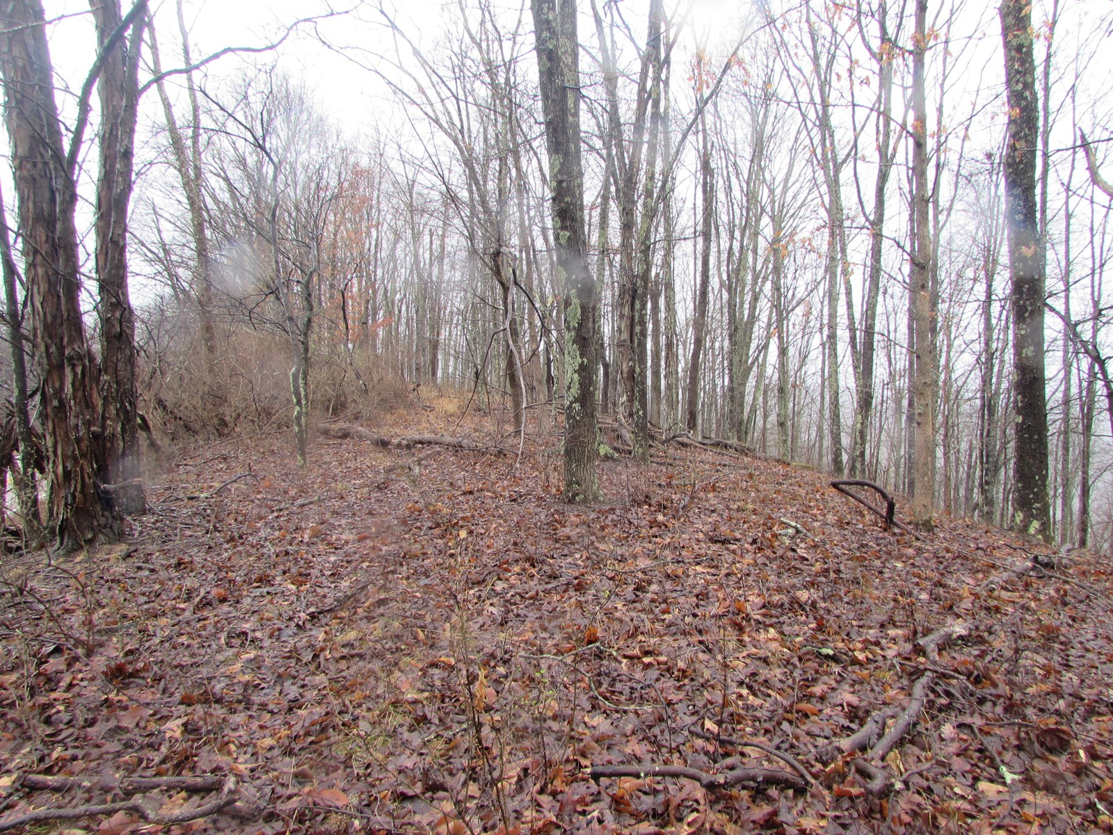 23.65 ACRES OF HUNTING LAND IN GILMER CO. WV