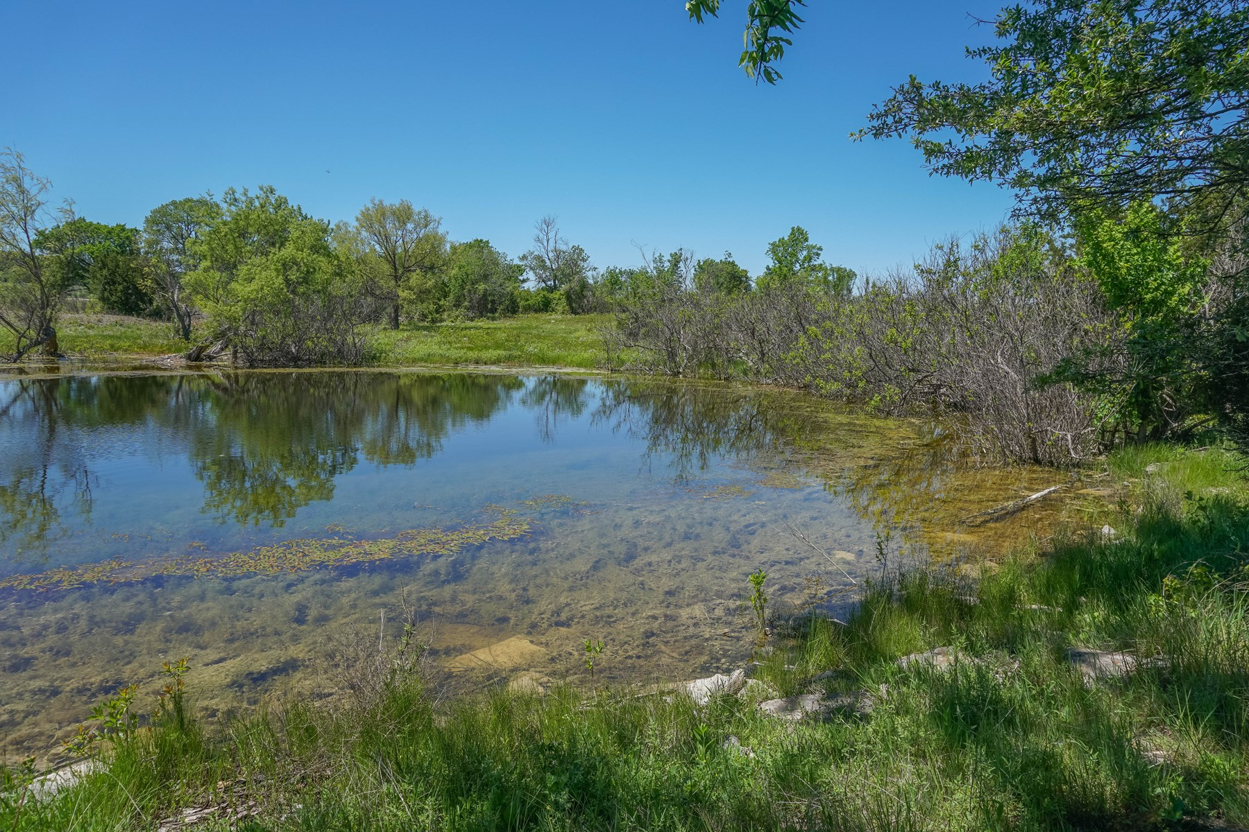 32+/- Acres in Coryell County: Hunting, Stock Tank, Creek