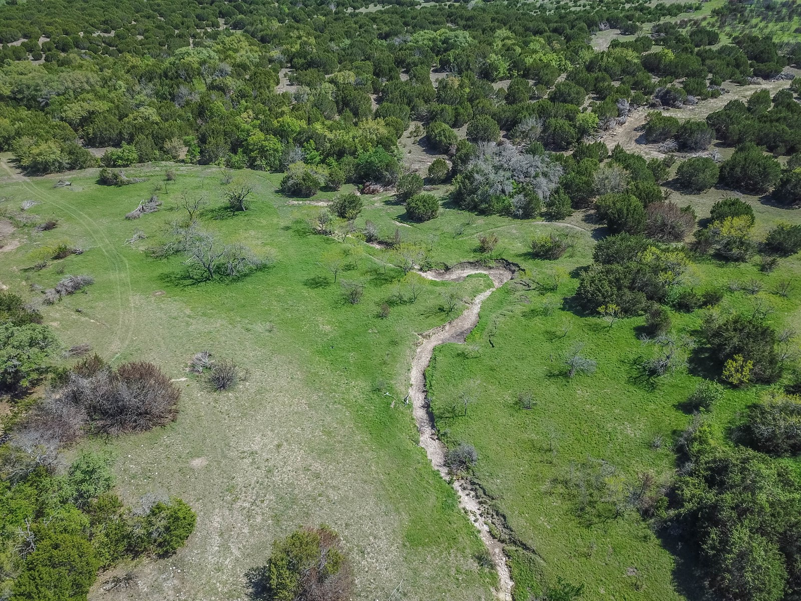 30+/- Acres in Coryell County: Hunting, Tank, Creek