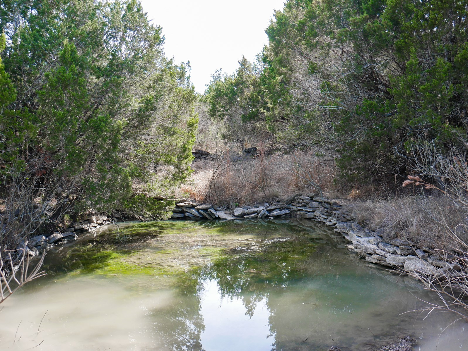 46+/- Acres in Coryell County: Hunting, Tank, Seasonal Creek