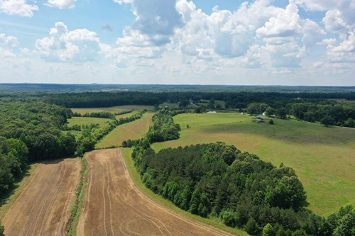 West Tennessee Farm For Sale!