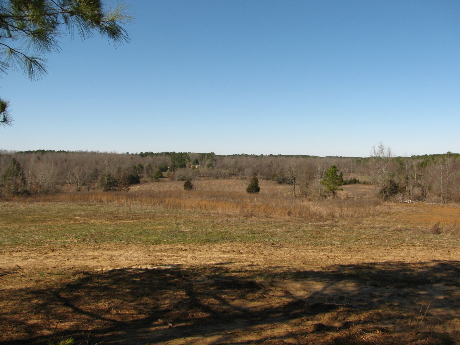 LAND FOR SALE IN TENNESSEE, FARM, POND, BARN, GREAT HUNTING