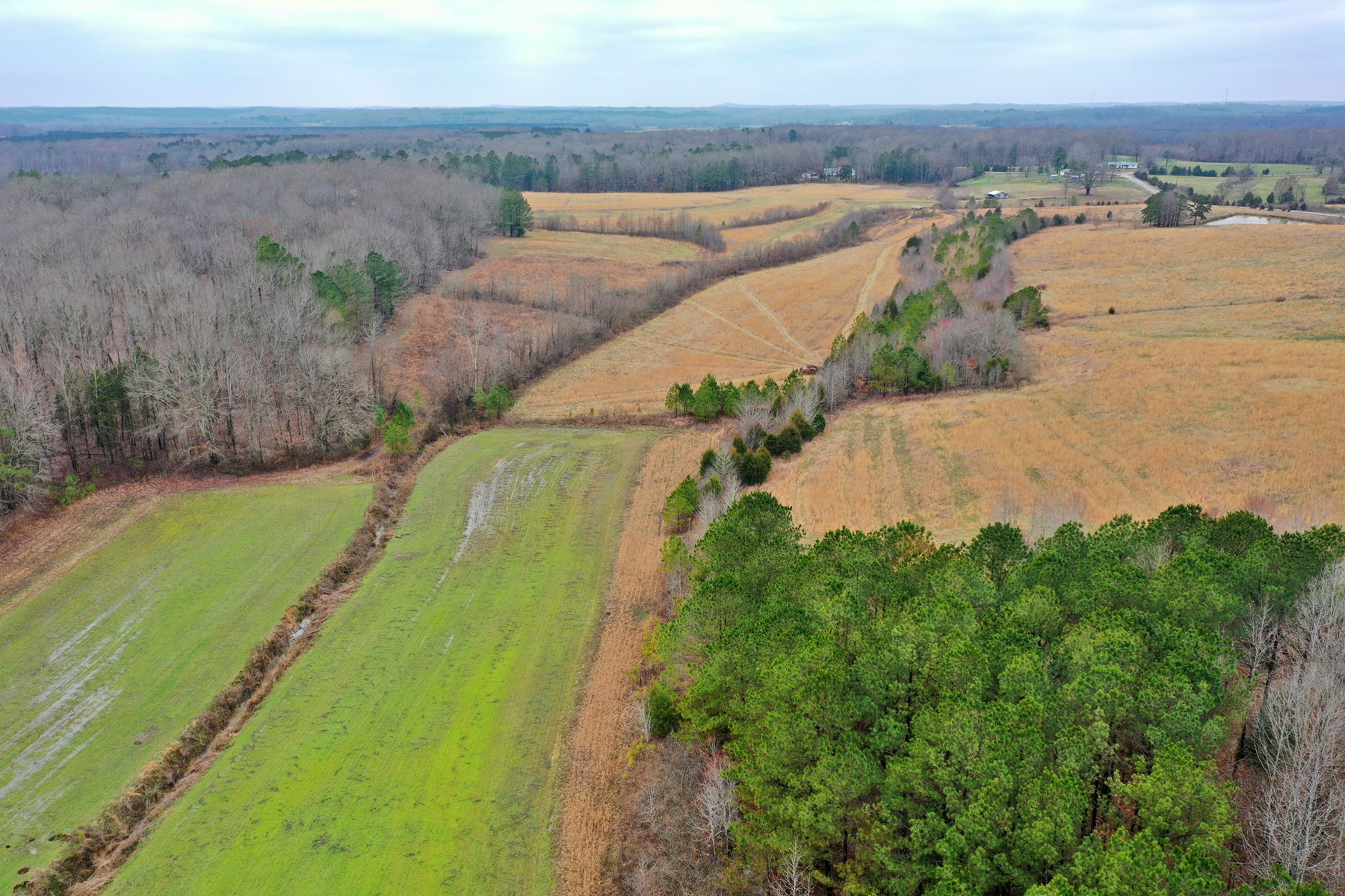 West Tn Farm For Sale!