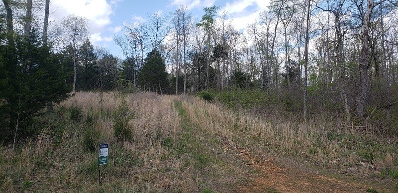 15 ACRES FOR SALE IN SOUTHEAST MISSOURI