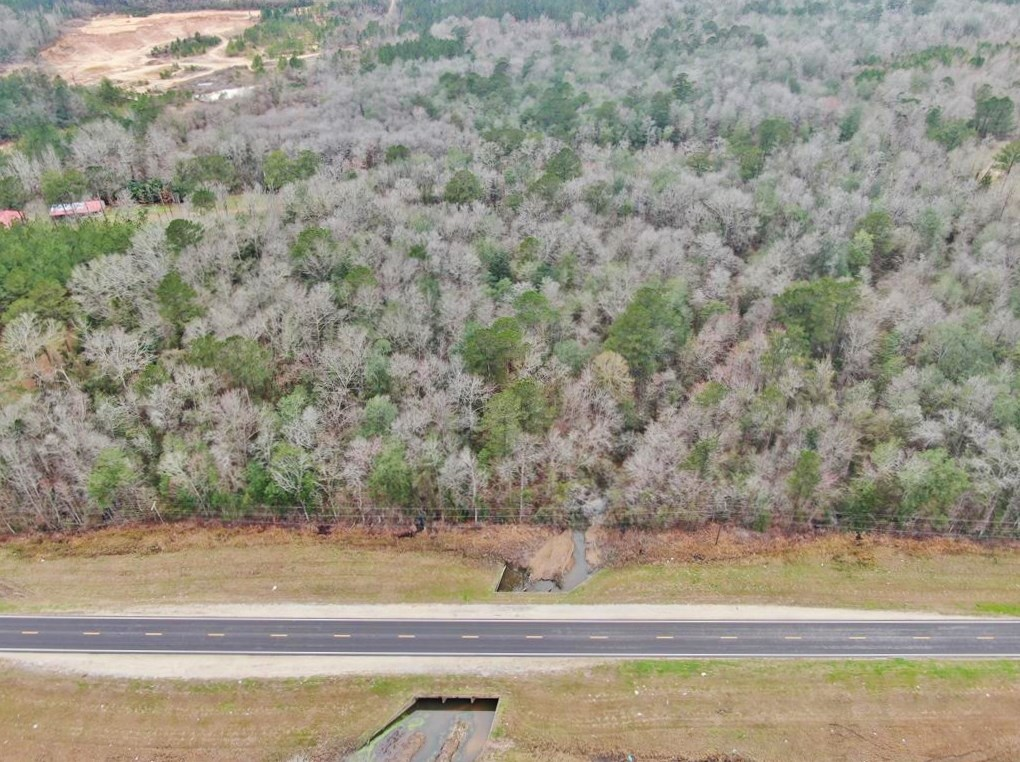 16.5 Acres Land for Sale Near Richton, Perry County, MS