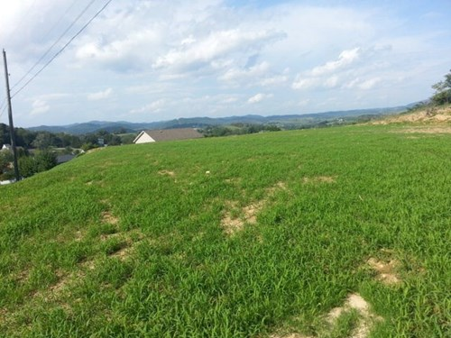 0.43 Acre Land For Sale Close to Town  Tazewell VA