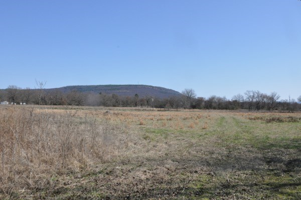 CATTLE & HAY FARM WITH HOMESITES IN CITY LIMITS FOR SALE