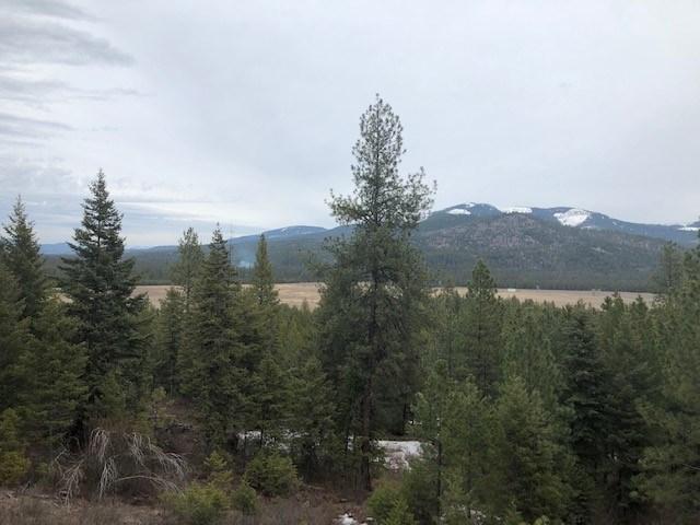 Timbered Acreage in Blanchard Idaho
