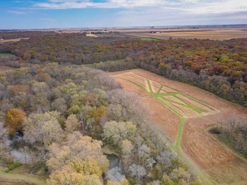 Dewitt County Illinois 502 Acre Hunting Property