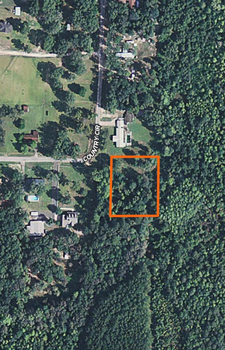 1.25 Acre for Sale in Clayhatchee, AL