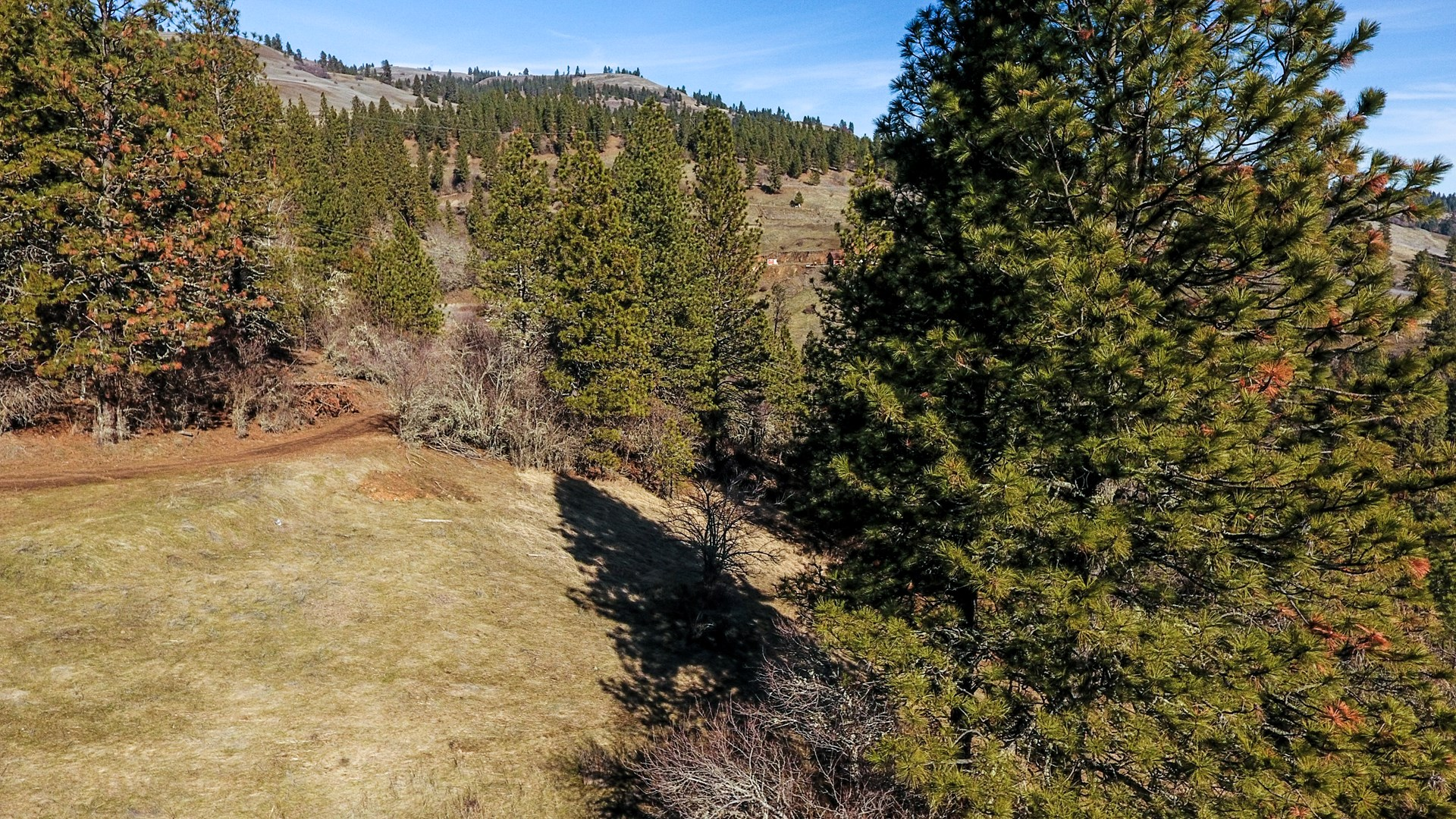 20 Acres along Clearwater River, Lenore ID Clearwater County