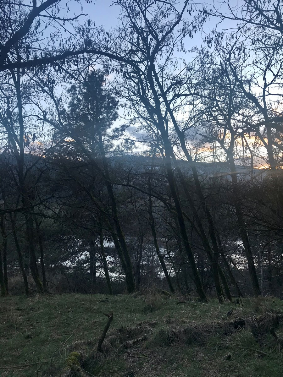Outstanding 9.99 acre +/- lot along the Clearwater River
