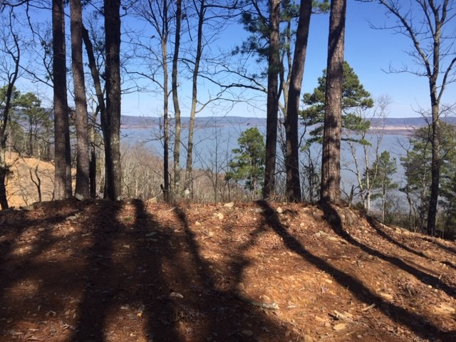 Land for Sale Lake Sardis Clayton,OK-Log Cabin Building Lot