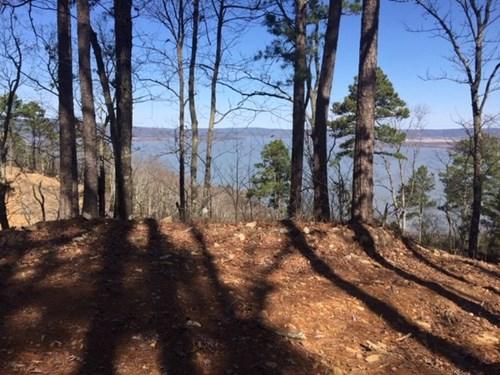 Land for Sale Lake Sardis Clayton,OK-Log Cabin Building Lot