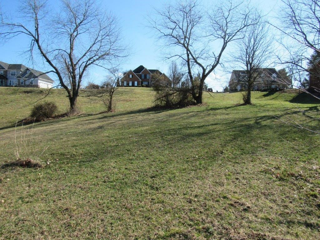Building Lot for Sale on Auburn Hills Golf Course in VA