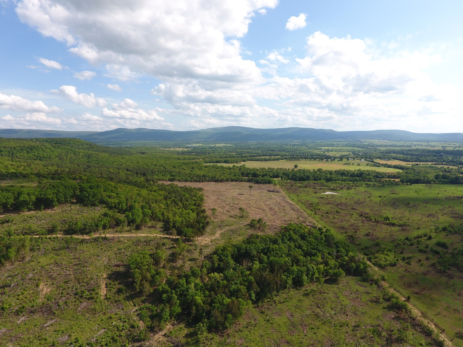 173 Acre Timber Investment and Hunting Property