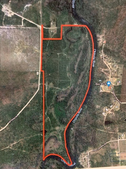 Hunting Land For Sale in Calhoun County, Florida
