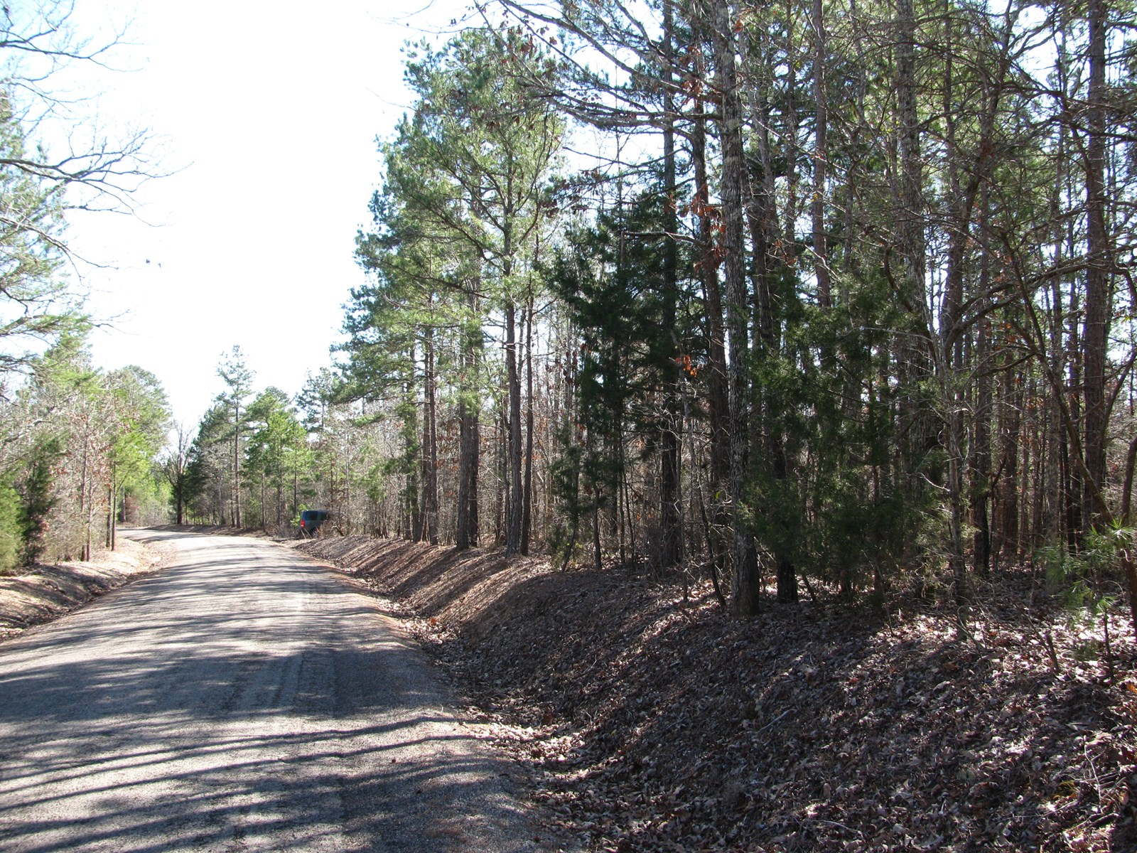 5 ACRES FOR SALE IN TENNESSEE, COUNTRY SETTING, WOODED