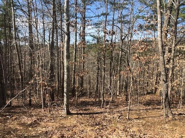 Wooded Acreage for sale, Fairmount, GA, Pickens, Mountains