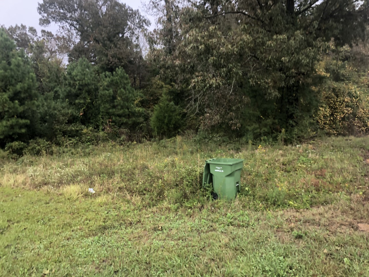 Lot for Sale - W Main St, Louisville, MS 39339