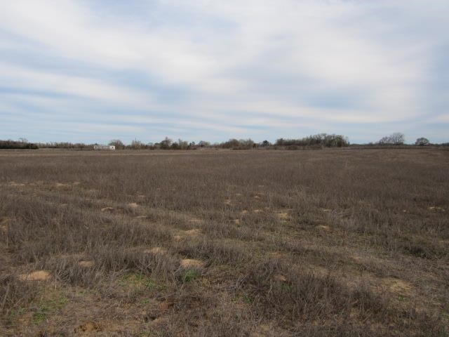 VACANT RESIDENTIAL LAND TO BUILD HOME IN LEON COUNTY