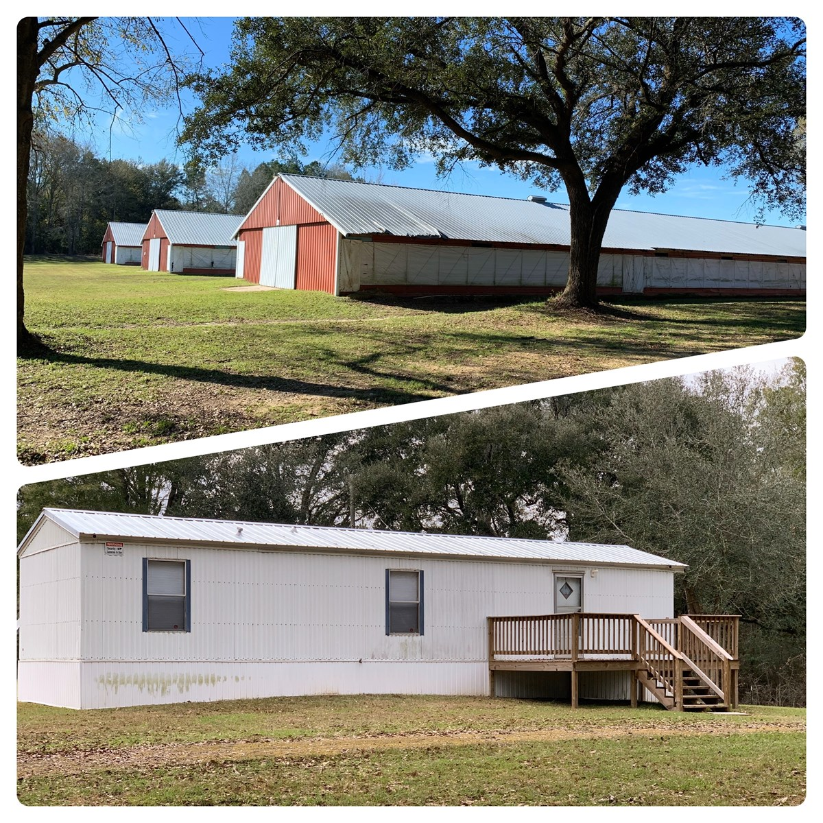 Mobile Home on 12 acres for sale Samson, Alabama