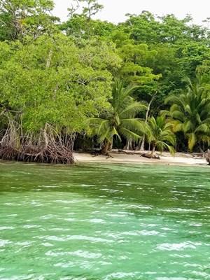 TITLED BEACHFRONT LOT, ISLA CARENERO, BOCAS DEL TORO PANAMA
