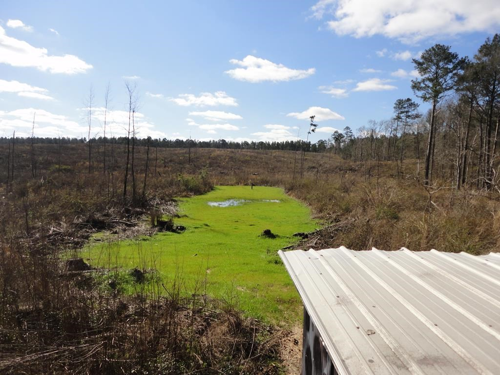 Hunitng Property For Sale 224 Acres Lincoln County MS