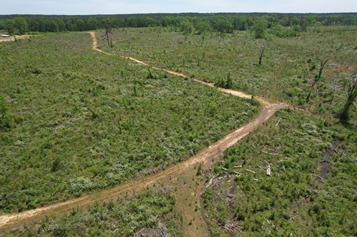 Hunting Land For Sale Lincoln County Brookhaven MS