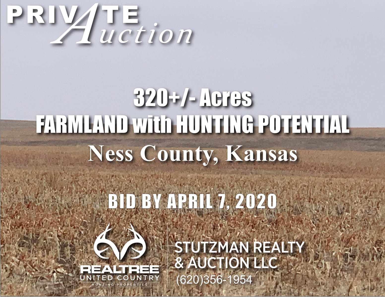 NESS COUNTY  KS ~ 320 +/- ACRES  FARM & HUNTING POTENTIAL