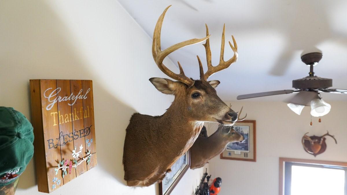 80 Acre & Home Adams County Wisconsin