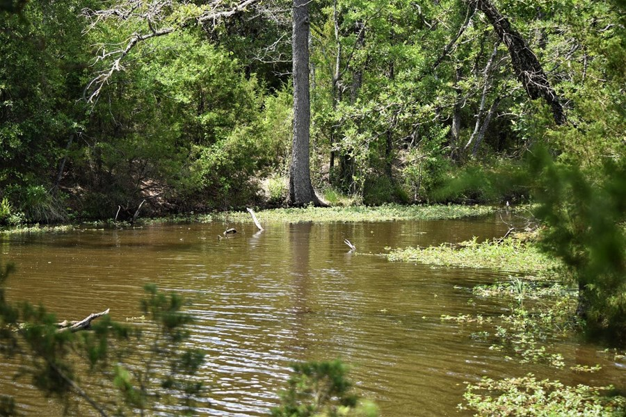 Bremond Texas Fishing Property