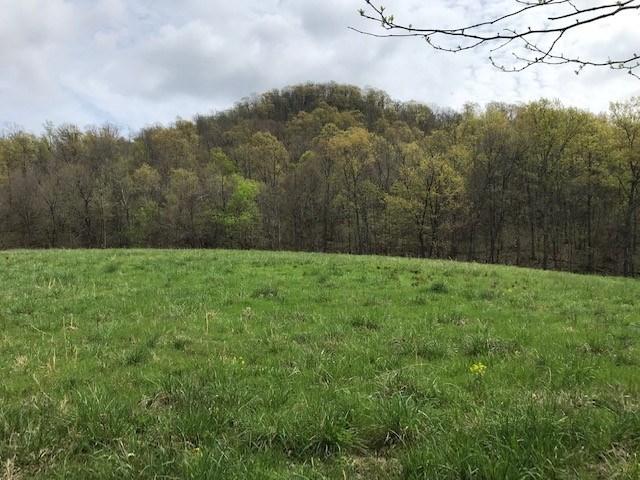 Year Round Creek, Pond, Wildlife on 193 acres Buffalo River