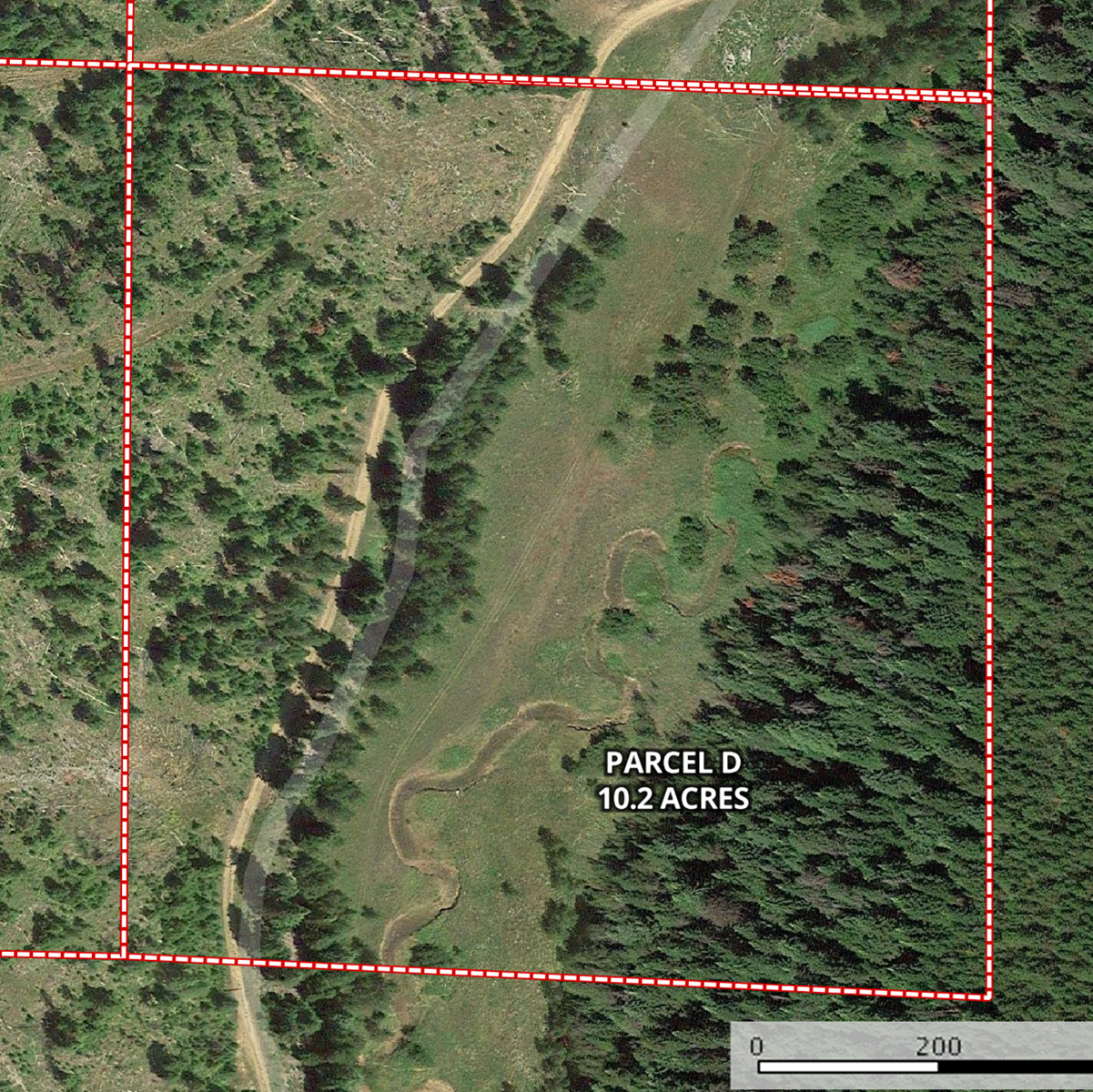 Timbered Building Land for Sale, Orofino, Idaho Real Estate